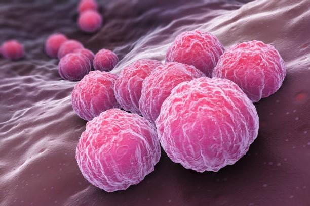 Как часто при беременности женщины болеют хладимиозом?